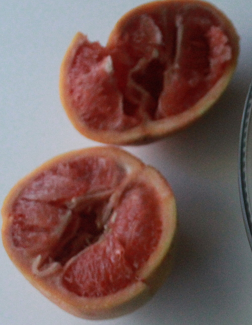 grapefruit cut on table